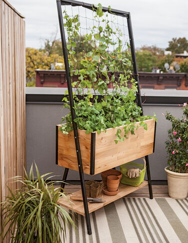 Apex Trellis Planter plant supports, garden trellis, garden supplies, organic garden supplies, vegetable garden supplies
