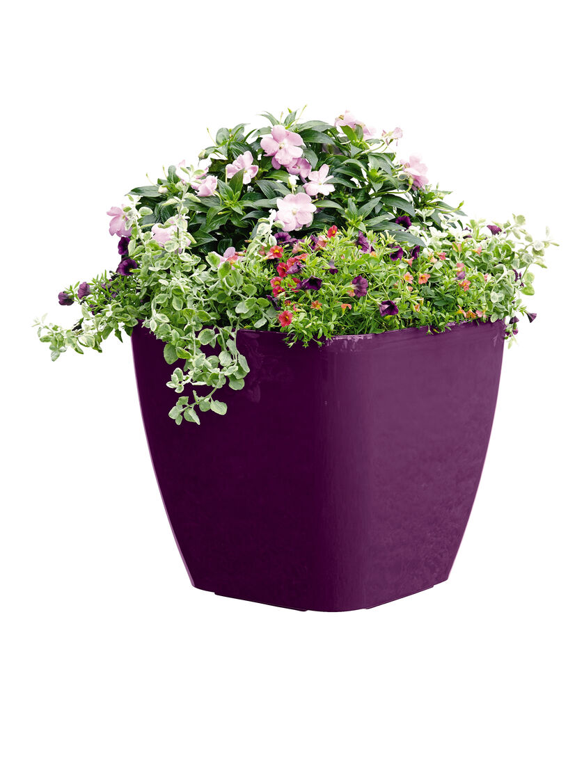 Large Square Planters Self Watering Rolling Planter