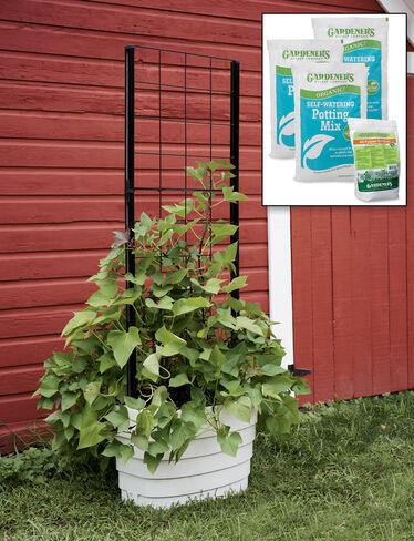 Gardener's Revolution® Classic Vine Garden Kit