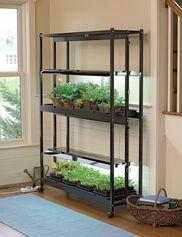 Standard 2-Tier SunLite® Garden