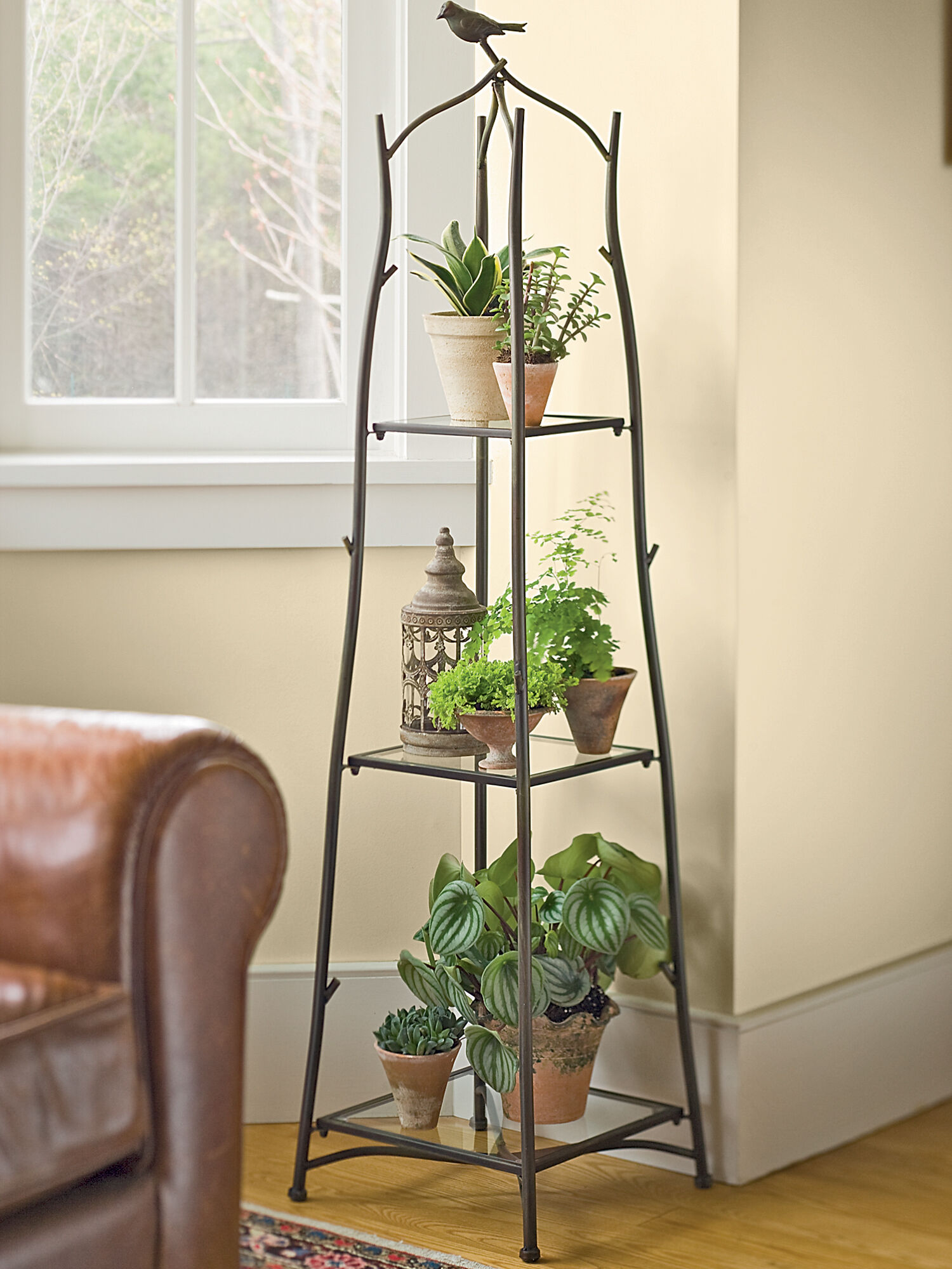 A frame plant stand and tray set ladder plant stand - Corner shelf for plants ...