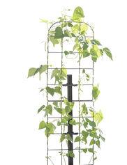 Gardener's Revolution® Vine Trellis