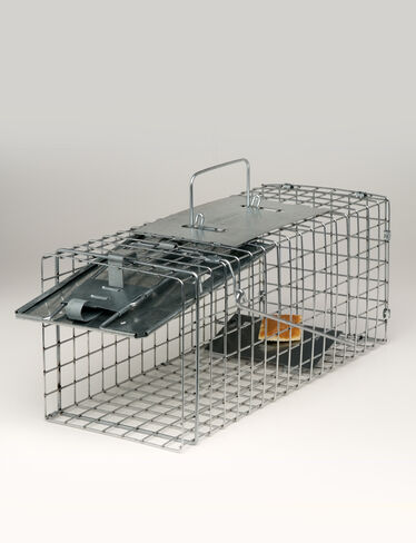 Havahart Squirrel Trap