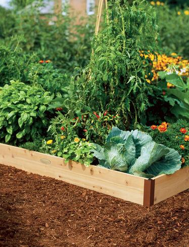 Cedar raised beds 2 ft raised bed gardening made in vermont for Garden room 2x3