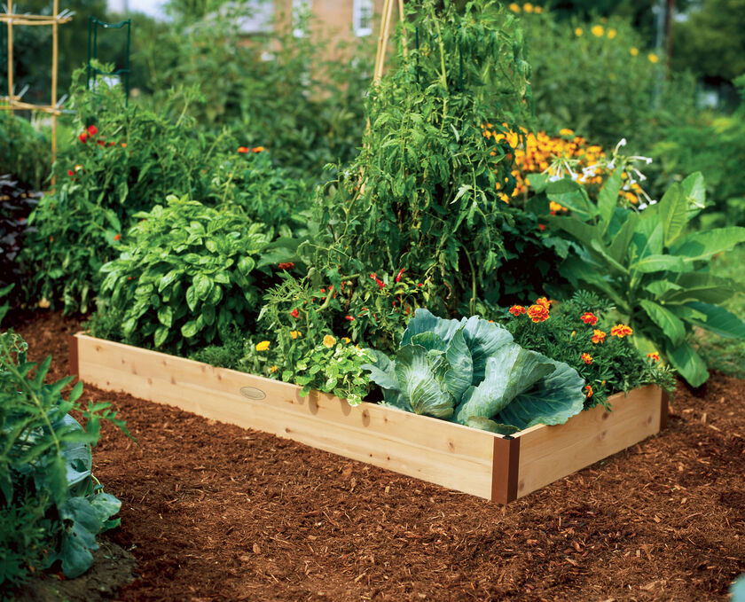 Cedar Raised Beds 2 Ft Raised Bed Gardening Made In Vermont