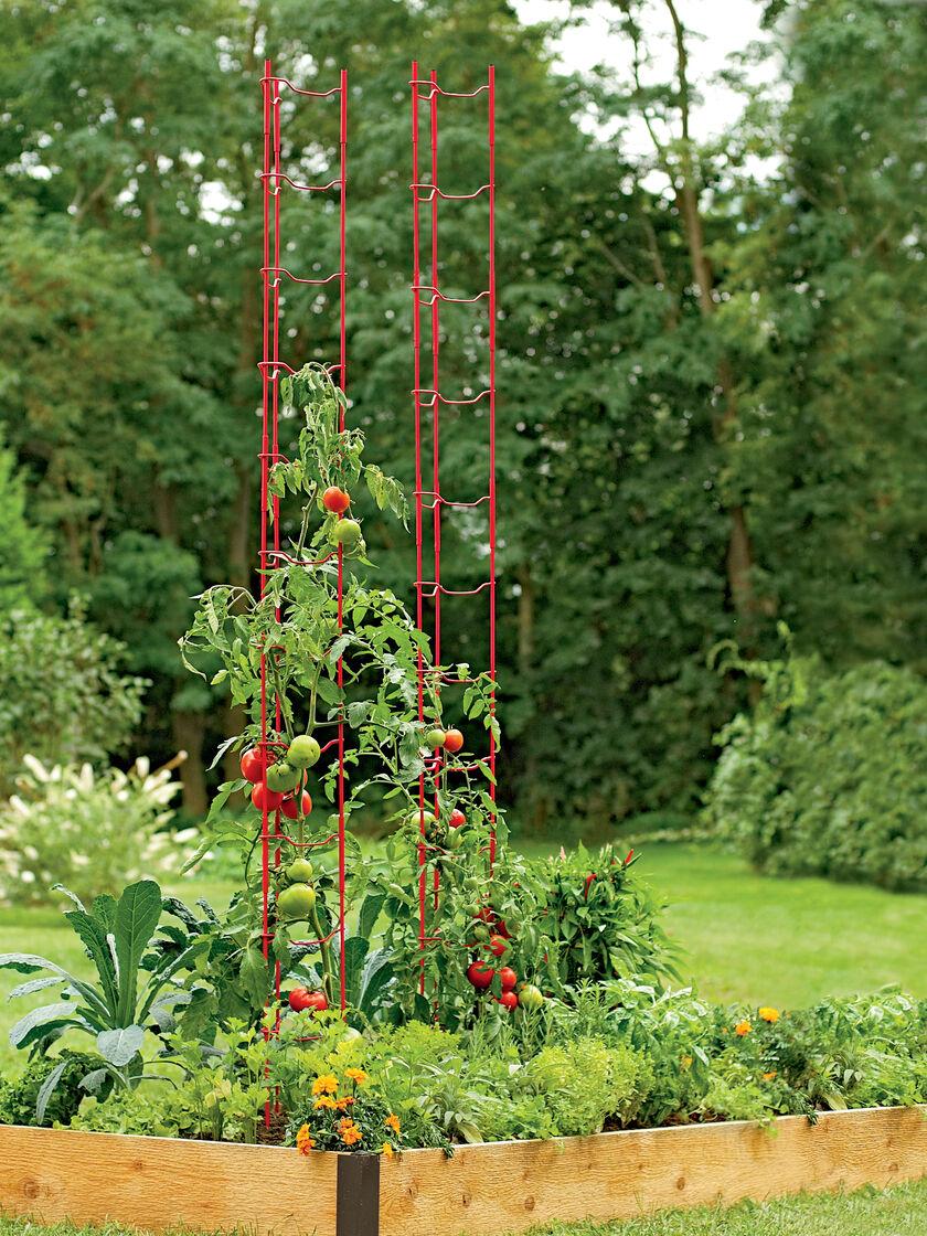 Tomato trellis stacking tomato ladder gardener 39 s supply for Trellis made to order