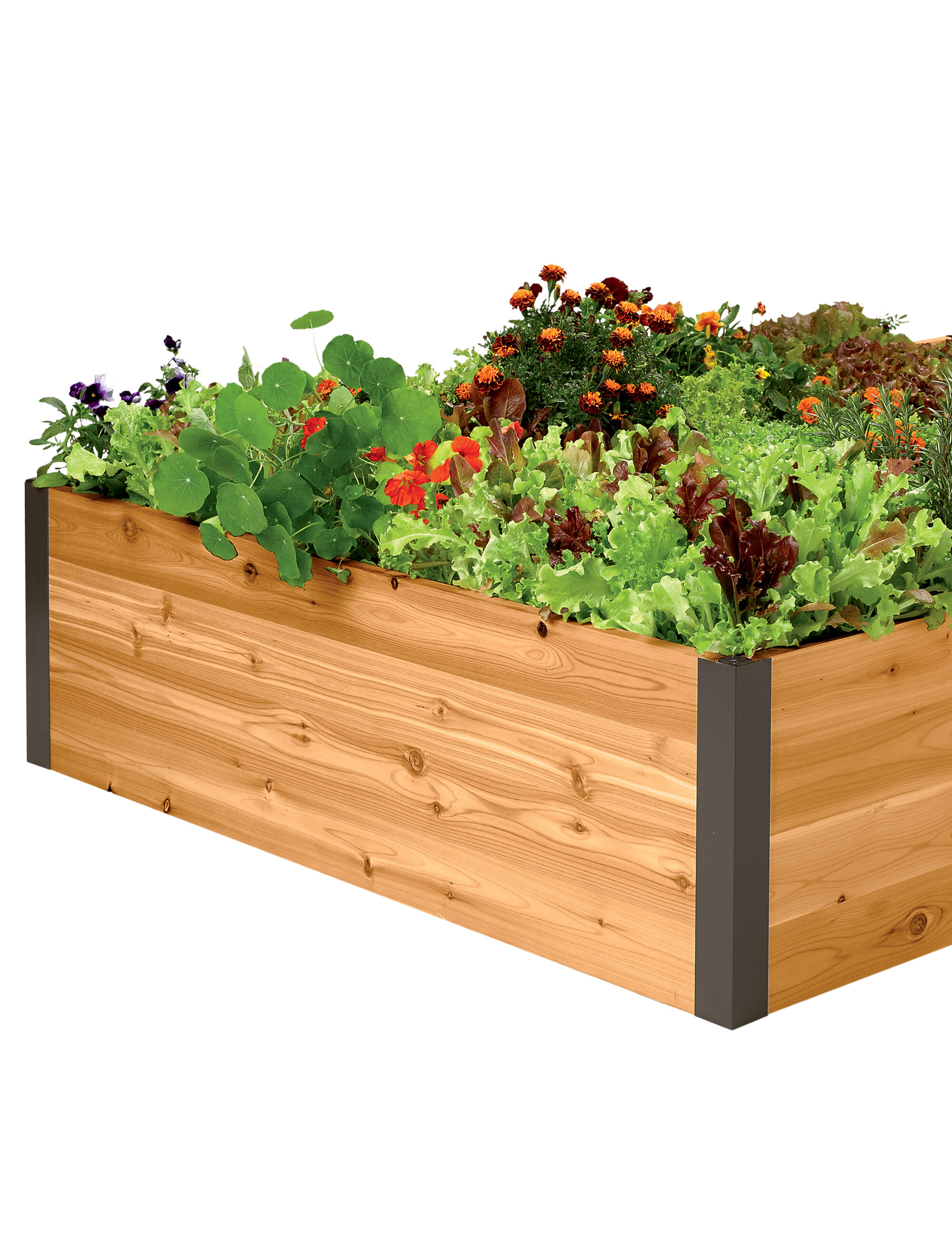 Pots Planters And Boxes For Container Gardening