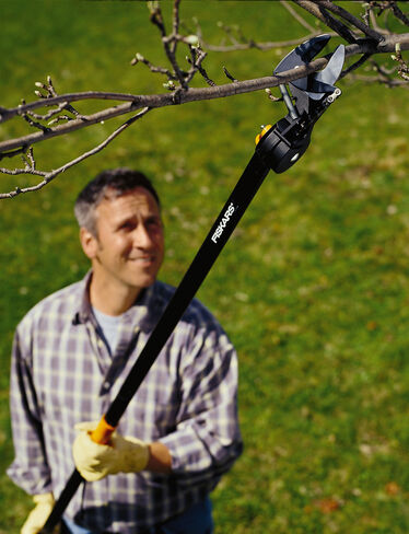 Pruning Stik Tree Pruner