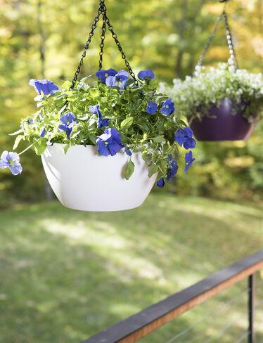 Viva Matte Self-Watering Hanging Basket