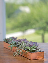 "Rectangular Copper Plant Tray, 24"" x 5"""