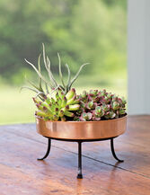 """Extra Small Round Copper Plant Tray, 8"""""""
