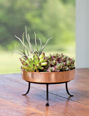 * Shown with Extra Small Plant Tray Stand, sold separately
