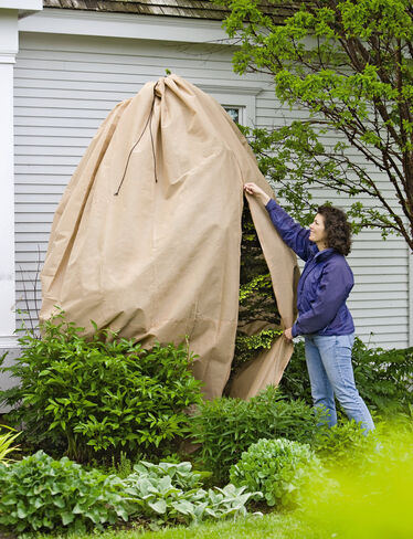 Zippered Shrub Covers