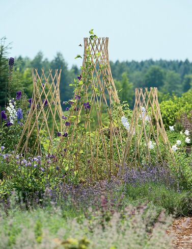 Expandable Willow Trellis, Small plant supports, garden trellis, garden supplies, organic garden supplies, vegetable garden supplies