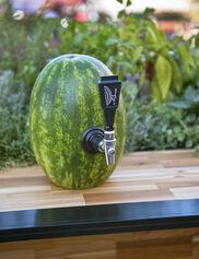 Watermelon Keg Tap