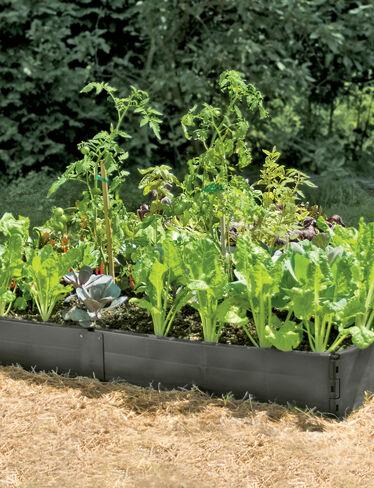 Grow Bed, 3' x 6'