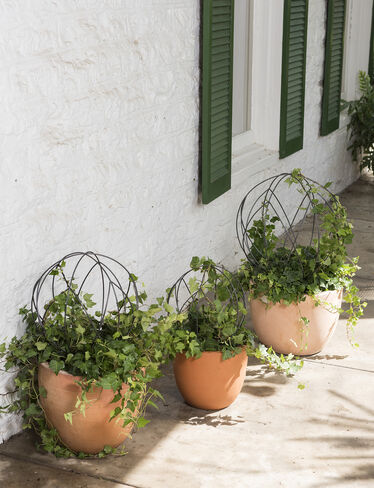 Sphere Topiary Frames