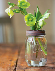 Mason Jar with Flower Frog