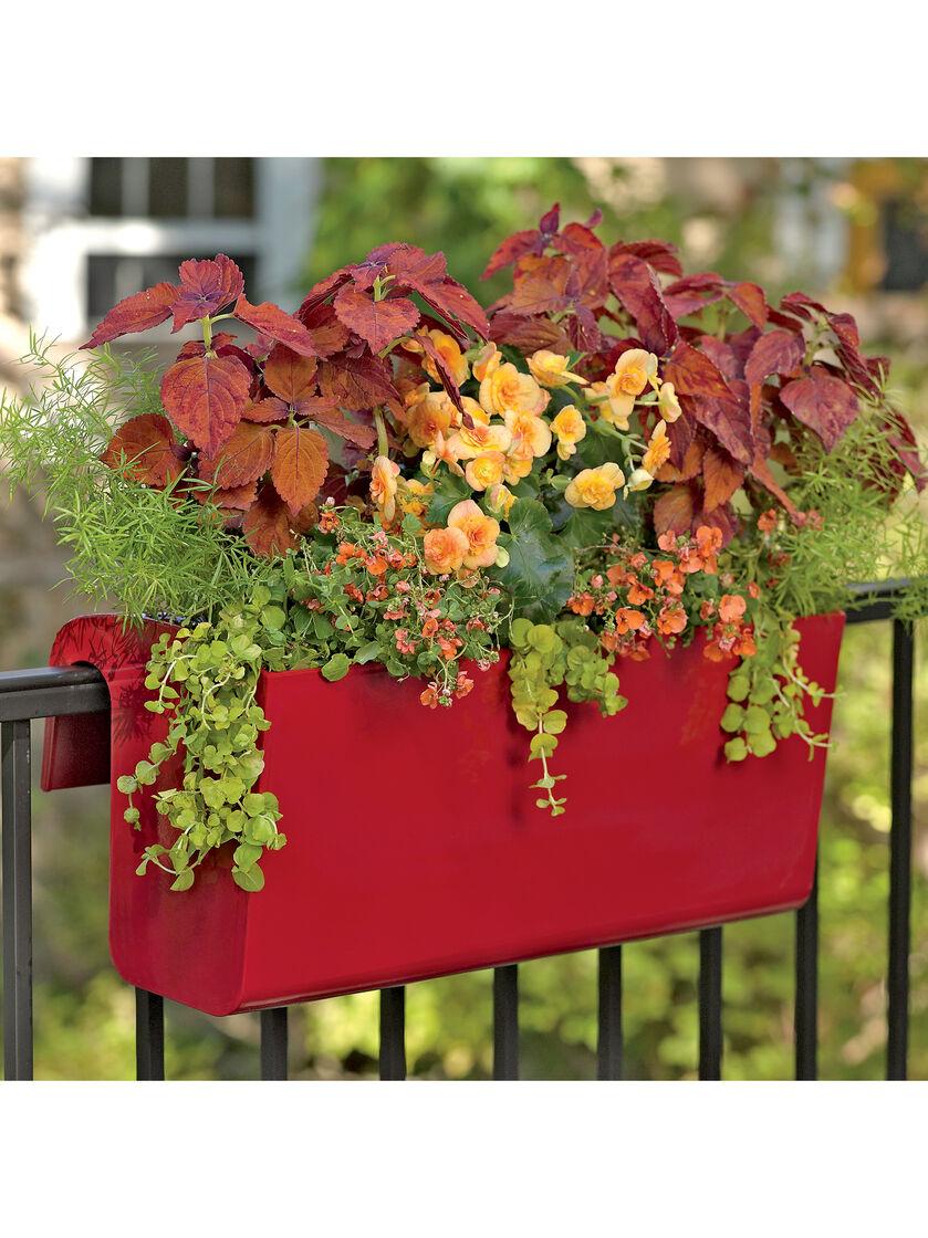 balcony garden viva self watering balcony railing planter. Black Bedroom Furniture Sets. Home Design Ideas