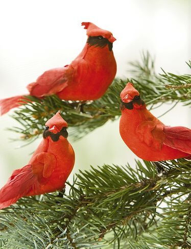 Cardinal Clip-On Ornaments, Set of 3