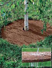 Coco Fiber Tree Rings,