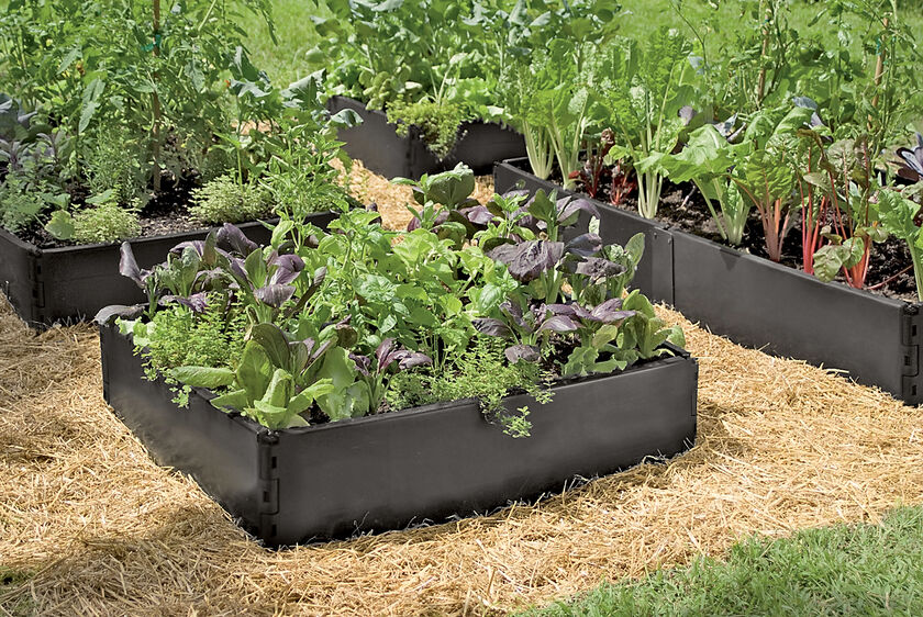 Grow Bed Recycled Plastic Above Ground Garden Beds Gardenerscom
