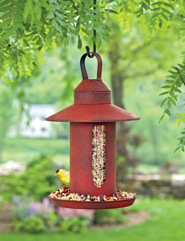 Red Domed Birdfeeder