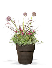 Sonoma Indoor Planter, Small