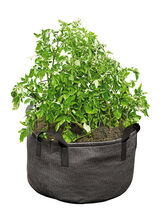 Gardener's Best Jumbo Potato Grow Bag