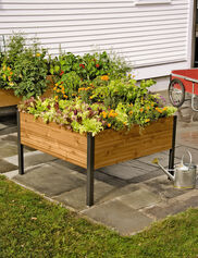 Elevated Cedar Planter Box, 4' x 4'