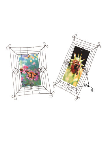 Trellis Photo Frames
