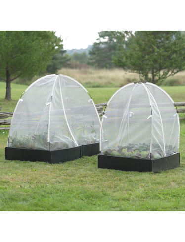 Plant Protection Tents