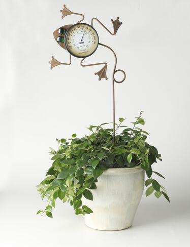 Whimsical Frog Thermometer