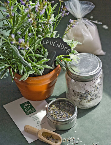 Lavender Bath Salt Kit
