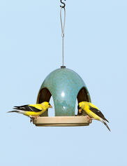 Fly-Through Bird Feeder