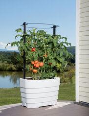 Gardener's Revolution® Classic Tomato Planter