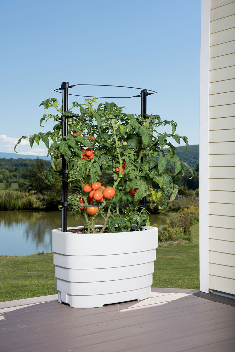 Gardener 39 s revolution classic tomato planter for Gardeners supply planters