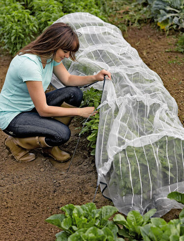 Insect Netting with Hoops