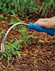 Cobrahead Weeder