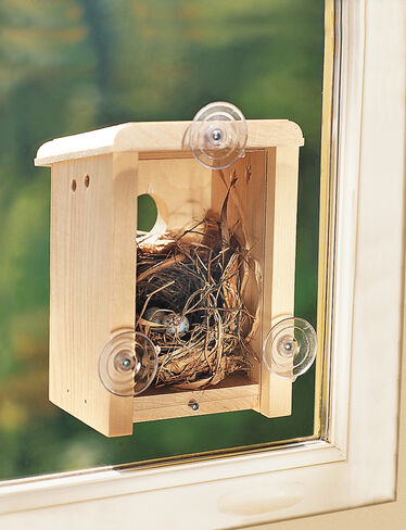 Window Bird House Nest Box Birdhouse Made In Maine
