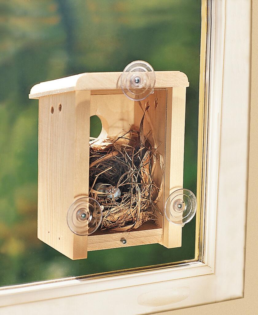 Mirror window bird feeder - Window Nest Box