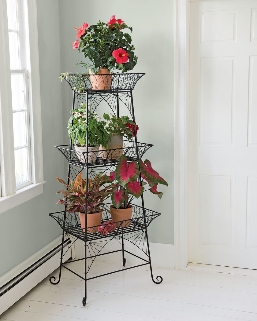 wire plant stand bathroom etagere black metal plant stand. Black Bedroom Furniture Sets. Home Design Ideas