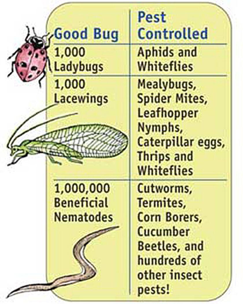 All Natural Garden Pest Control Reviews