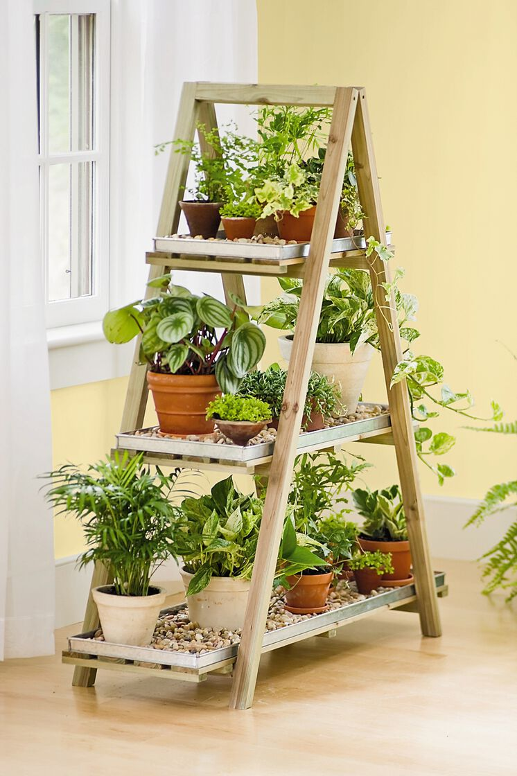 a frame plant stand