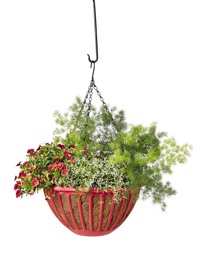 Hanging baskets aquasav hanging flower basket for Colorful hanging planters