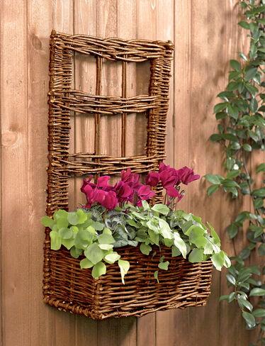 Willow Wall Garden