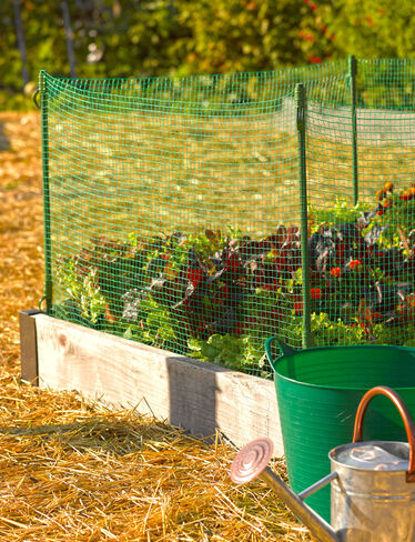 Low Pest Fence