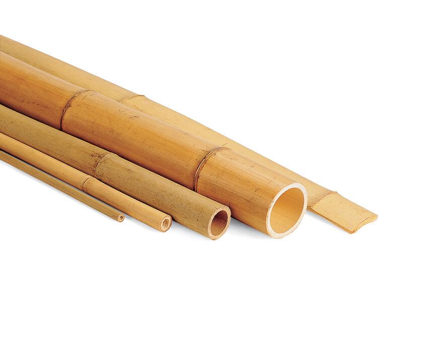 Bamboo Poles Bamboo Stakes Bamboo Sticks Gardenerscom