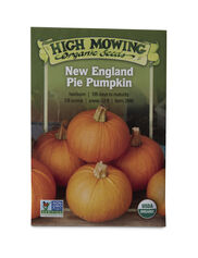 New England Pie Pumpkin Organic Seeds