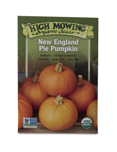 New England Pie Pumpkin Organic Seeds